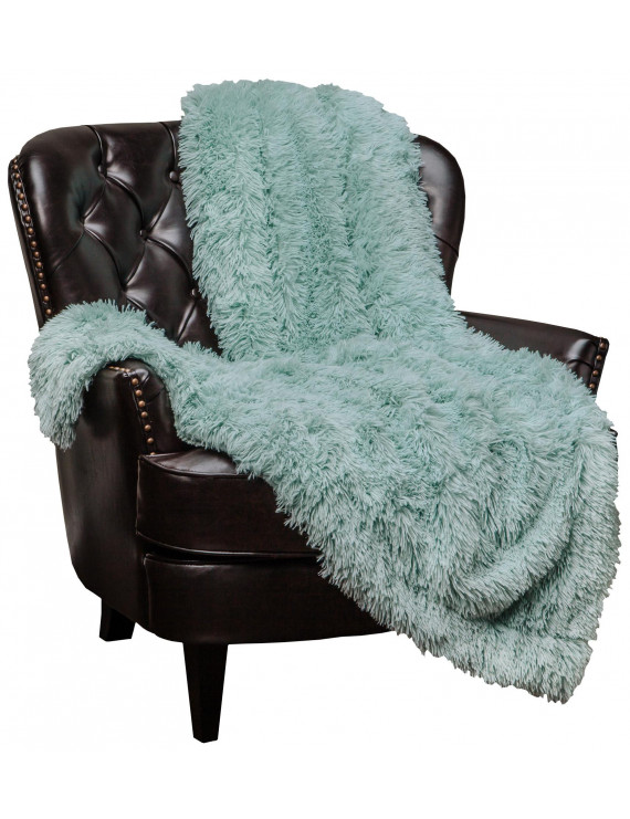 "Chanasya Super Soft Shaggy Longfur Throw Blanket | Snuggly Fuzzy Faux Fur Lightweight Warm Elegant Cozy Plush Sherpa Microfiber Blanket | For Couch Bed Chair Photo Props - 60 ""x 70"" - Aqua Turquoise"