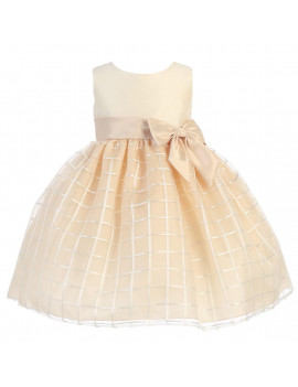 Baby Girls Champagne Poly Silk Embroidered Organza Dress 6-12M