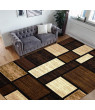 HR- Square Pattern Area Rug 5x7 Geometric Pattern Modern Brown Chocolate Carpet Comfy shed Free Stain Resistant