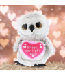 Dollibu Happy Mother's Day Stuffed Animal, Heart Message for best Mommy, Grandma, Wife, Step Mom, Mama - Cute Soft Adorable Sentiment Plush Teddy Bear - Surprise Present Gift Arrangement - Owl