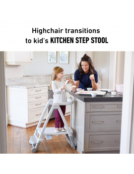 Graco EveryStep 7-in-1 Highchair, Alaska