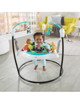 Fisher-Price Animal Wonders Jumperoo with Lights & Sounds