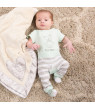 Pavilion - Sweet Baby - Silver Silk Edge Royal Plush Baby's First Blanket 30 x 40 Inch