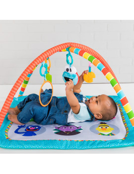 Bright Starts Fun with Sesame Street Friends Activity Gym and Playmat, Ages 0-12 months