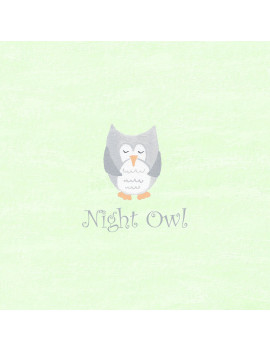 """Nightowl"" Owl Wall Art"