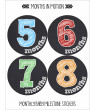 months in motion monthly baby stickers baby boy or baby girl milestone sticker (1134)
