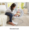 Fisher-Price See & Soothe Deluxe Bouncer, Hands-Free