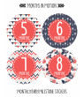 Months in Motion 365 Monthly Baby Stickers Baby Girl Months 1-12 Milestone