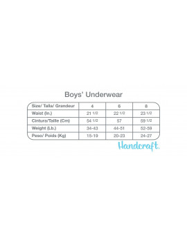 Pokémon, Boys Underwear, 5 Pack Boxer Briefs (Little Boys & Big Boys)