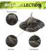 Dollibu Wild Stuffed Animals Soft Plush Collection, Best Storytime Buddy Animal Gift for Children, Adorable Nursery Sea Sting Ray Creature Peekaboo Critters Baby Toy for Girls & Boys - Stingray 18 in.