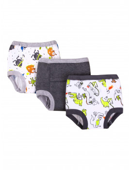 Little Star Toddler Boys Organic Pure Organic Cotton Assorted Potty Training Pants, 3-Pack